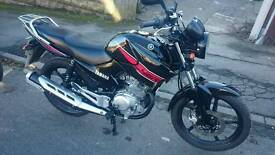 Yamaha YBR 125 Excellent Condition