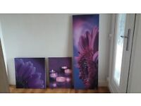 3 Canvas Pictures.