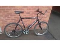 Excel Black Bullet Mountain Bike