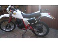 Honda XL600 R