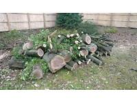 Free logs, firewood for FREE available now
