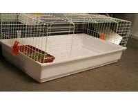 White and orange pet cage rabbit / guinea pig