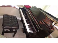 "Yamaha C1 Baby Grand Piano. Immaculate. Black. Japanese Conservatoire intrument. 5'3"" length."