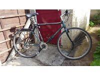 """Trek Carbon Bike 20"""""""