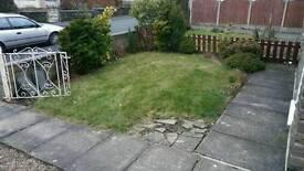 Turf, grass, garden