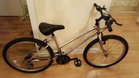 FULLY RESTORED unisex kid's bike
