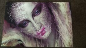 Beautiful lady framed canvas picture New