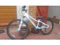 Saracen child mountain bike 21 gears