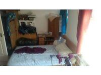 Spacious, double room with en suite to rent £280pcm + bills