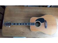 Solid Top Fenix (Young Chang) D90SR Acoustic Guitar **Reduced was £180**