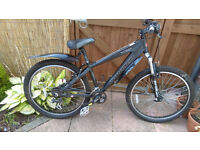 Saracen Xile mountain bike
