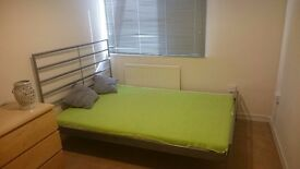 Nice Double Room for Single Professional