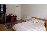 Professional to share lovely Hyndland flat all bills included.