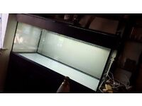 5ft Aquarium Fish Tank
