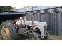 TE20 vintage ferguson tractor. Not 135 massey