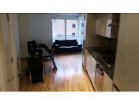 Good sized furnished double room available