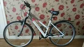 Bicycle Apollo Endeavour - hybrid sport.