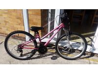 Apollo Vivid Girls Mountain Bike