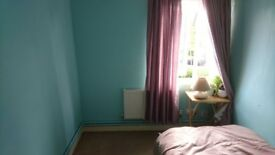 Single Room Available Garden View