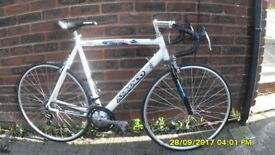 AMMOCO SPORT 14sp RACING BIKE LARGE LIGHTWEIGHT 23in/58cm ALLOY FRAME EXC COND USED 3 TIMES