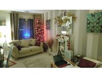 Artificial (approx 5ft) green tree with all decorations,lights