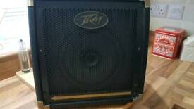 Peavey 20w acoustic amp