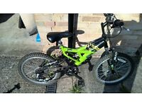kids Raleigh extreme bike