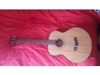 Fender acoustic bass
