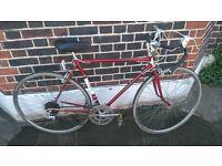 raleigh record limited vintage racing bike