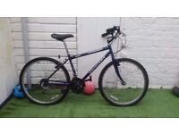 "CONCEPT CONQUEST 15 SPEED/FRAME 17""/WHEELS 26"" UNISEX MOUNTAIN BIKE"