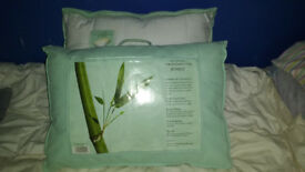 Bamboo Pillows Extra firm Quilted NEW UNUSED