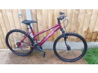 Nakamura cliff hanger mountain bike with front suspension ladies bike