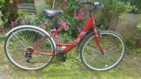 Apollo Cafe Comfort Series Bike