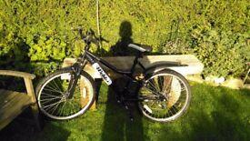 Junior Mountain Bike