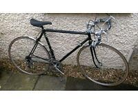 Raleigh Road Bike