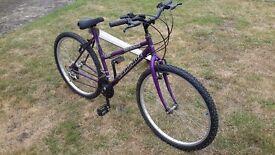 Ladies bike, just serviced