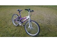 Girls Raleigh Bicycle. Very good condition