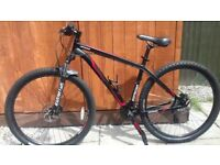 Specialized 29er Mountain Bike Large