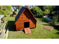 Chicken Coop for up to 8 bantams