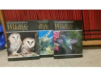 The illustrated encyclopedia of wildlife - 62 volumes.
