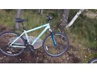 Ladies Girks mountain bike
