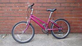 Raleigh girl's bike