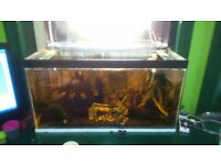 aquarium 36x15x18 with ornaments and kit