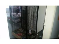 ** Large cage suitable for small animal / bird, chinchilla, rat, dejus etc. Good condition **