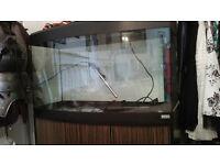 180 litre fluval vicenza fishtank and cabinet