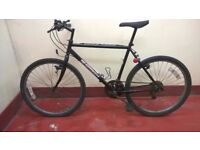 Gents Beartooth Bike for sale 21''( tyre size 26 x 1.90