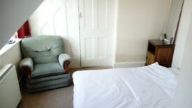Large Room in Quiet Central Flat