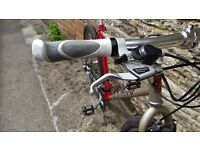 Carrera Symmetry bike size 48cm with low gears