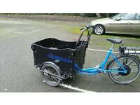 Cargo electric bicycle