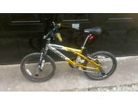 Gold and silver magna stacker bmx